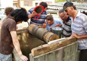 Topola01 Bunar Save Turjacanina foto M PILIPOVIC
