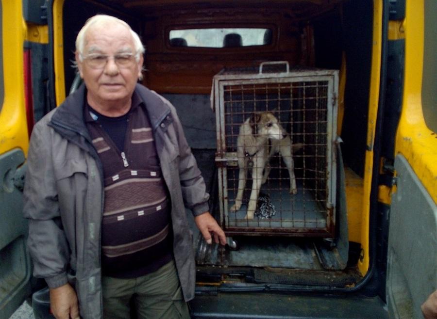 MIRKOVI BURNI PENZIONERSKI DANI Spasava napuštene pse, juri pljačkaše i daje prvu pomoć zbog putokaza